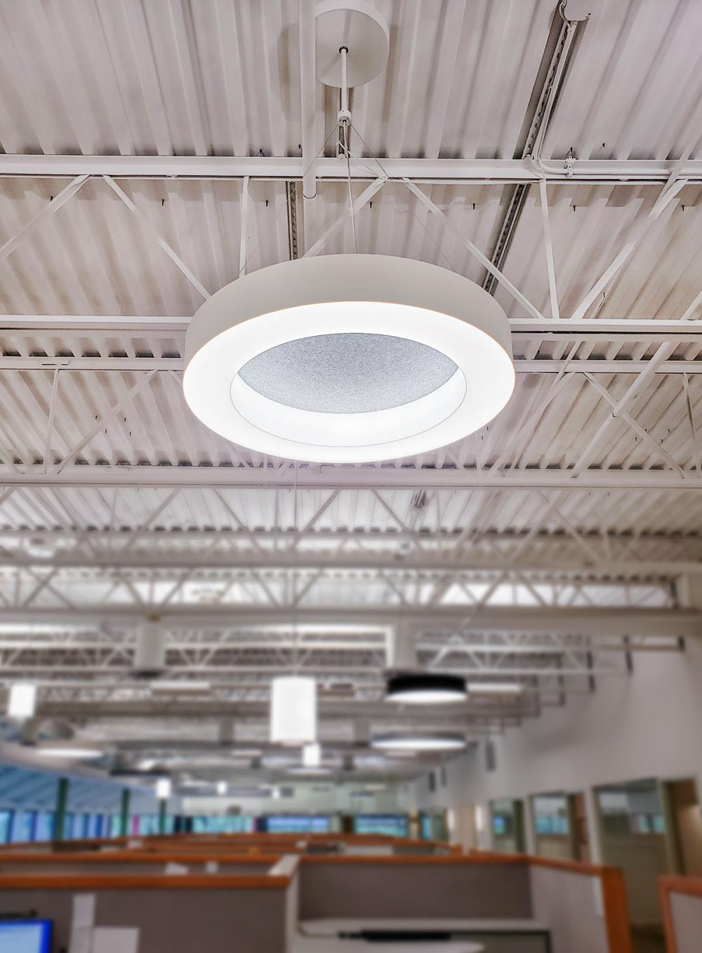 Novato Ring Acoustic - SPI Lighting Offices